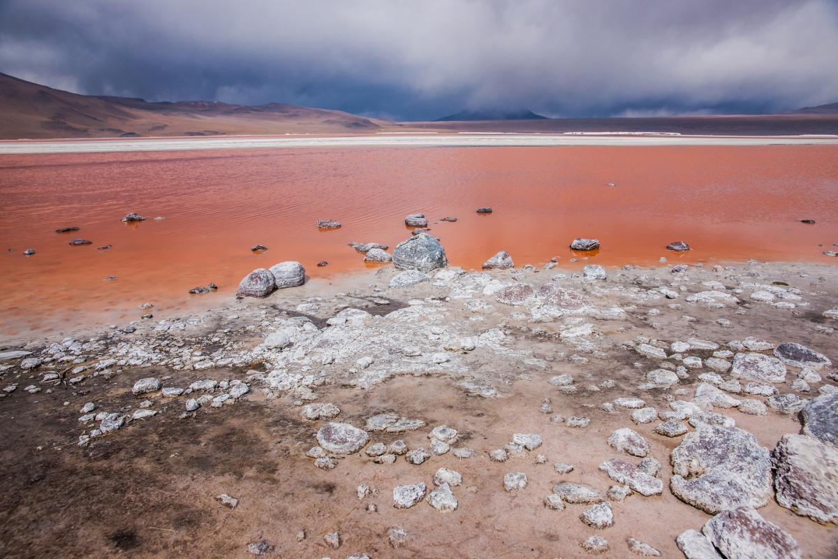 annuaire photographes suisse romande, Laguna Colorada, Lipez, Bolivie - http://www.pierik.ch - Pierik de Neuchâtel