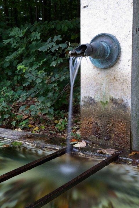 annuaire photographes suisse romande, A la claire fontaine - http://www.28mm.ch - Stéph. Genoux de Morges
