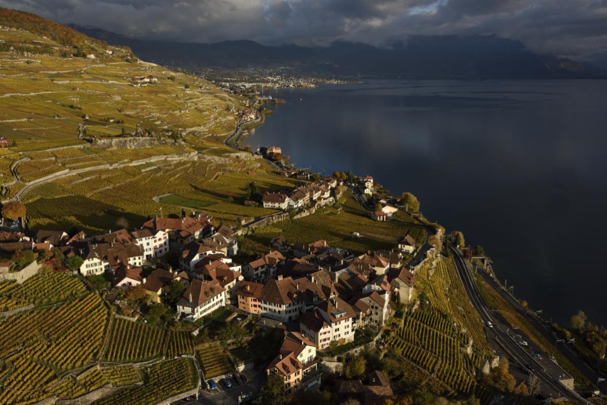 annuaire photographes suisse romande, Rivaz dans le Lavaux - http://www.highflycam.com/ - HighFlyCam de Genève