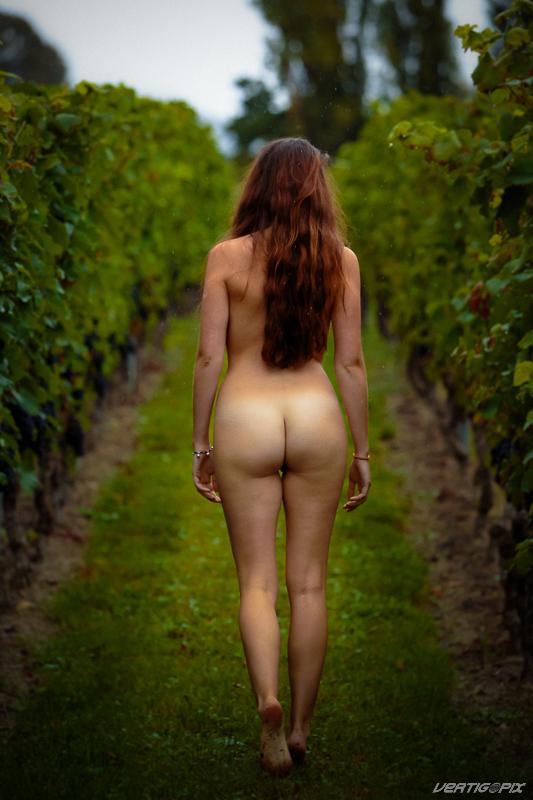 annuaire photographes suisse romande, Grapes - http://www.vertigopix.ch - VertigoPix de Mathod